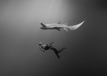 澄實自由潛水
